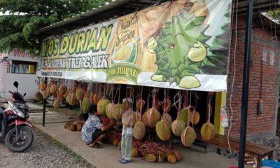 Salah satu lapak durian di jalan raya Trenggalek-Tulungagung. (mil)